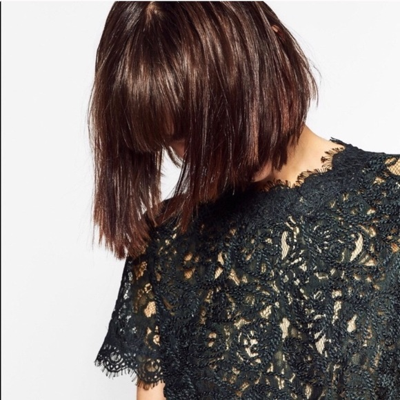 Zara Tops - zara • green embroidered lace high neck top
